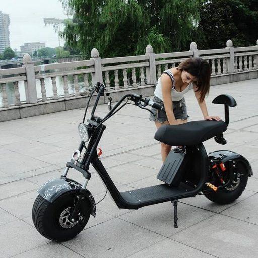 Citycoco scooter eléctrico